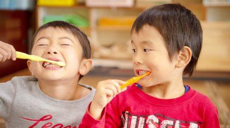 歯磨き口腔教育