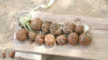 泥だんご 自然素材 土